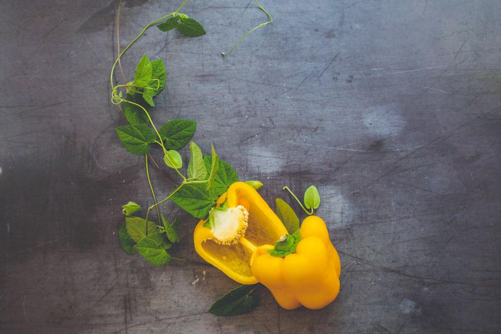 mango-curry-aufstrich